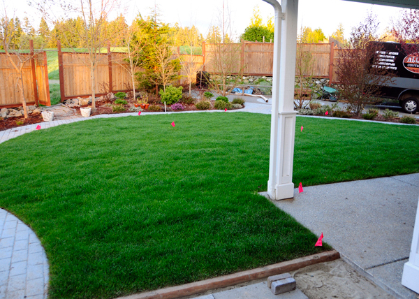 victoria-landscaping-after-construction